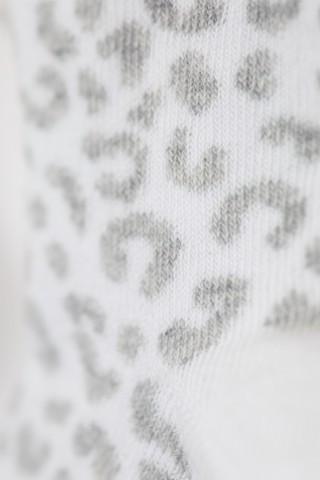 Dvopak Leopard Sokne